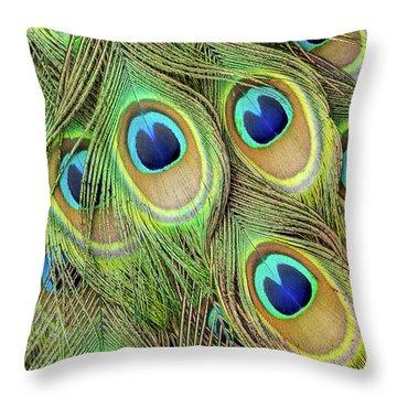 Living Peacock Abstract Throw Pillow