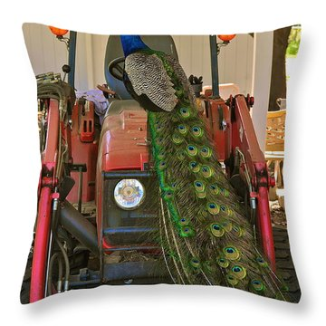 Peacock And His Ride Throw Pillow