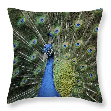 Throw Pillow featuring the photograph Peacock Displaying Closeup by Bradford Martin