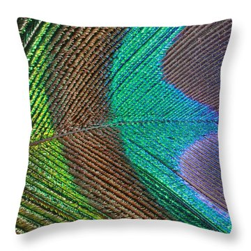 Peacock Feather Close Up Throw Pillow