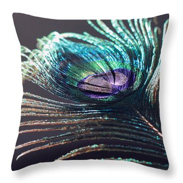 Peacock Feather In Sun Light Throw Pillow