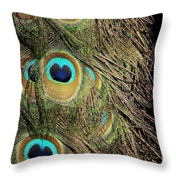 Peacock Feathers Throw Pillow by Sabrina L Ryan