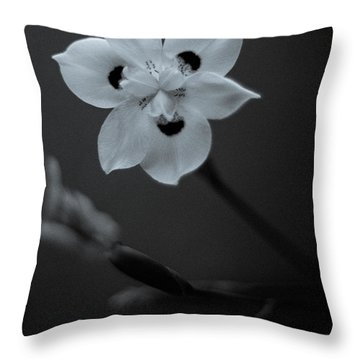 Peacock Flower - Iris - Three Throw Pillow