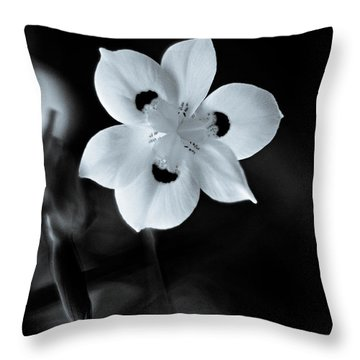 Peacock Flower - Iris - Two Throw Pillow