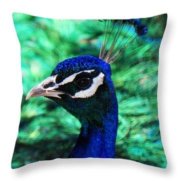 Peacock Throw Pillow by Joseph Frank Baraba
