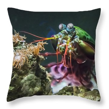Peacock Mantis Shrimp Profile Throw Pillow