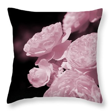 Peacock Pink Cabbage Roses On Black Throw Pillow