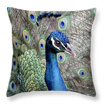 Peacock Portrait Throw Pillow by Bob Slitzan