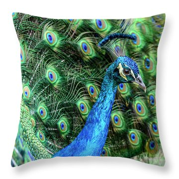 Throw Pillow featuring the photograph Peacock by Steven Sparks
