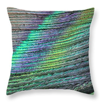 Peacock Stripes Throw Pillow