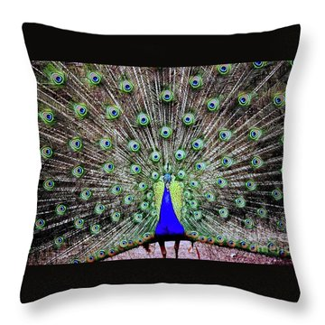 Peacock Throw Pillow by Vivian Krug Cotton