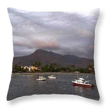 Throw Pillow featuring the photograph Peaceful by Jim Walls PhotoArtist