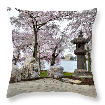 Peak-a-boo Throw Pillow