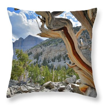 Throw Pillow featuring the photograph Peak Bristlecone Pine by Ray Mathis