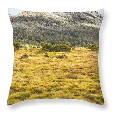 Peaks And Plateaus Throw Pillow