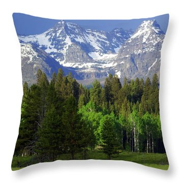 Peaks Throw Pillow by Marty Koch