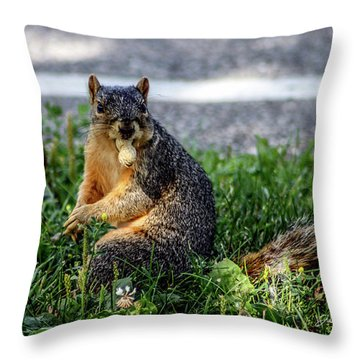 Throw Pillow featuring the photograph Peanut by Joann Copeland-Paul
