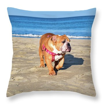 Peanut On The Beach Throw Pillow