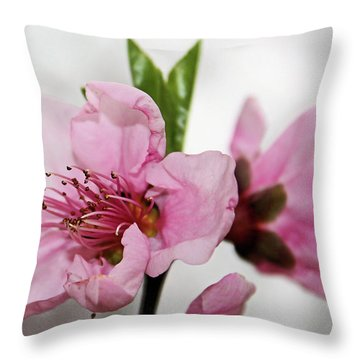 Throw Pillow featuring the photograph Plum Blossom by Kristin Elmquist