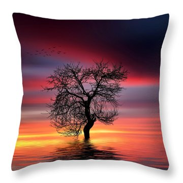 Pear On Lake Throw Pillow by Bess Hamiti