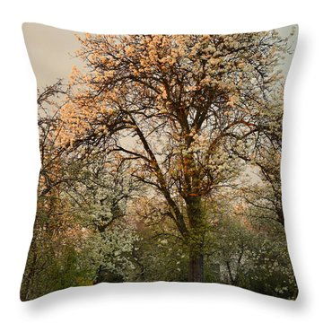Pear Spring Sunrise Throw Pillow by Henryk Gorecki