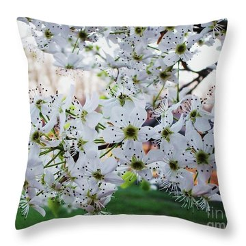 Pear Tree Throw Pillow by Donna Dixon