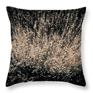 Throw Pillow featuring the photograph Boundless Joy by Tom Vaughan