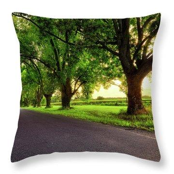 Throw Pillow featuring the photograph Pecan Alley Sunrise - Scott Arkansas - Landscape by Jason Politte