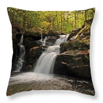 Throw Pillow featuring the photograph Pecks Falls by Mike Martin