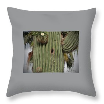 Peek-a-boo Cactus Wren Throw Pillow