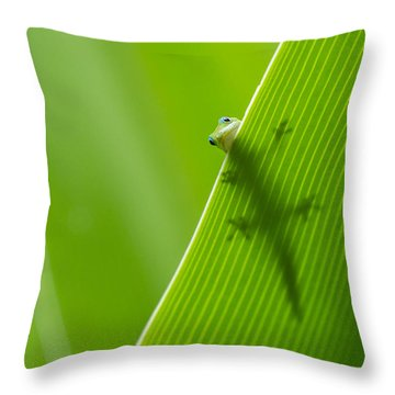Throw Pillow featuring the photograph Peek A Boo Gecko by Christina Lihani