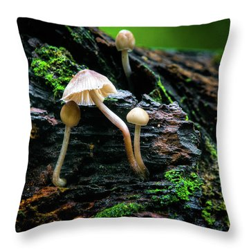 Throw Pillow featuring the photograph Peek-a-boo Mushroom by Dennis Dame