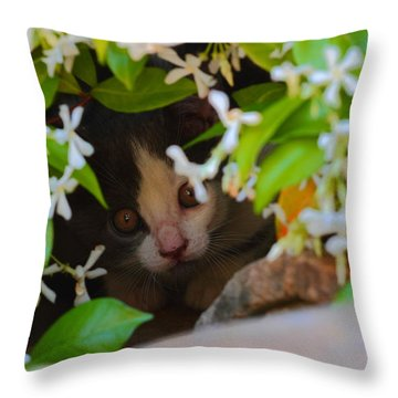 Throw Pillow featuring the photograph Peek-a-boo by Richard Patmore
