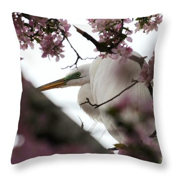 Peek A Boo Throw Pillow by Sandra Updyke