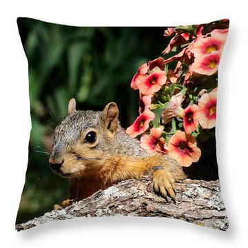 Peek-a-boo Squirrel Throw Pillow
