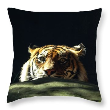 Throw Pillow featuring the photograph Peek-a-boo Tiger by Angela DeFrias