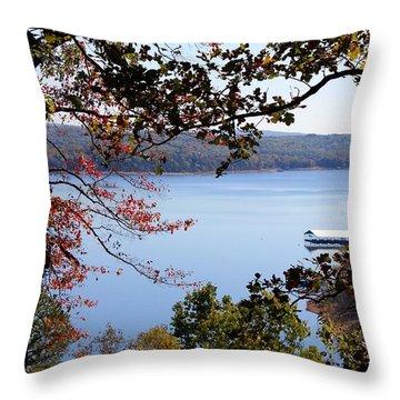 Peek-a-view Throw Pillow