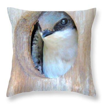 Peek Of Blue  Throw Pillow