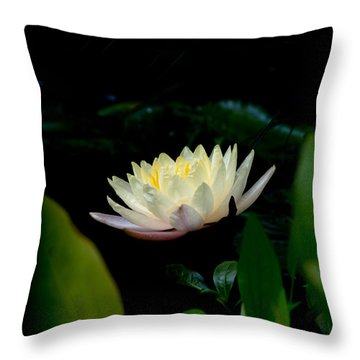 Peekaboo Lemon Water Lily Throw Pillow