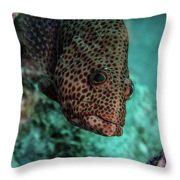 Throw Pillow featuring the photograph Peeking Coney by Jean Noren