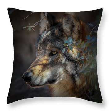 Peeking Out From The Shadows Throw Pillow