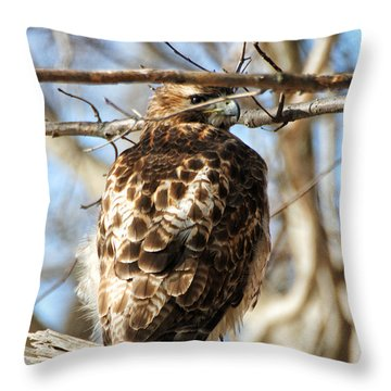 Throw Pillow featuring the photograph Peeking Through The Branches by William Selander