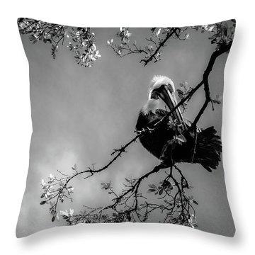 Pelican Connection Throw Pillow