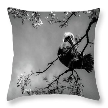 Pelican Connection Throw Pillow