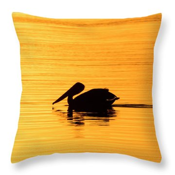 Throw Pillow featuring the photograph Pelican Cruising At Sunset In Key West by Bob Slitzan