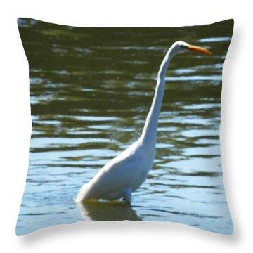 Pelican Emerging Throw Pillow