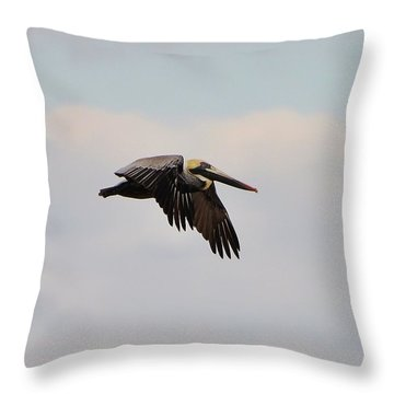 Pelican Flight Throw Pillow by Al Powell Photography USA