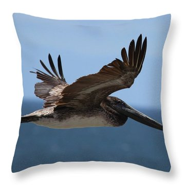 Pelican Flying Wings Up  Throw Pillow