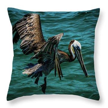 Pelican Glide Throw Pillow