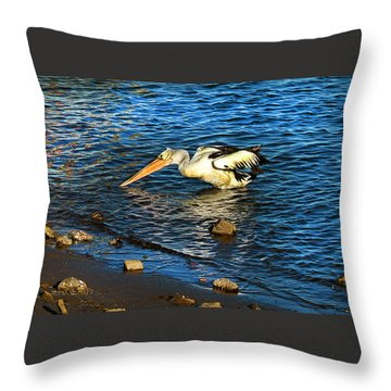 Pelican In Action Throw Pillow by Susan Vineyard